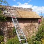 onderhoud aan een tuinhuis  met rieten dak